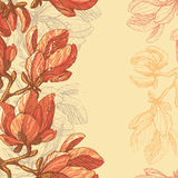 Hand drawn magnolia flowers seamless border Stock Images