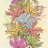 Hand drawn maple foliage vertical seamless border Royalty Free Stock Image