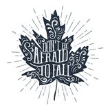 Hand drawn maple leaf vector illustration. Hand drawn maple leaf textured vector illustration and `Don`t be afraid to fall` lettering Stock Image