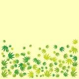 Hand Drawn Marijuana Leaves Frame Background Stock Photo