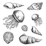 Hand Drawn marine life doodles set. Sketch style icons. Decorati. On element. Isolated on white background. Flat design. Vector illustration royalty free illustration