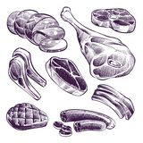 Hand drawn meat. Steak, beef and pork, lamb grill meat and sausage vintage sketch vector illustration vector illustration