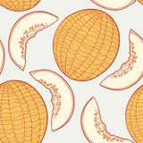 Hand drawn melon with slice seamless pattern Royalty Free Stock Photography