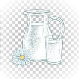 Hand drawn milk jug and glass of milk with daisy. Vector sketch. Hand drawn milk jug and glass of milk with daisy. Sketches . Colored graphic design. Vector Royalty Free Stock Photo