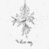 Hand drawn mistletoe Royalty Free Stock Photo