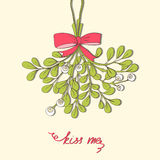 Hand drawn mistletoe Royalty Free Stock Images