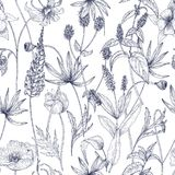 Hand drawn monochrome floral seamless pattern with gorgeous vintage wild flowers, herbs and herbaceous plants on white stock illustration