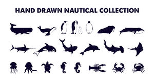 Hand drawn monochrome sea animals vector illustrations set. Stock Photo