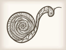 Hand drawn monochrome snail Stock Images