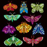 Hand drawn moths set Royalty Free Stock Images