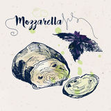 Hand drawn mozzarella cheese and basil leaves Royalty Free Stock Photography