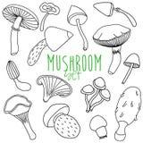 Hand drawn mushroom set Royalty Free Stock Photos