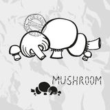 Hand drawn mushrooms Stock Photography