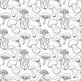 Hand drawn mushrooms seamless pattern. Doodle vector background with edible mushrooms. Healthy food Stock Images