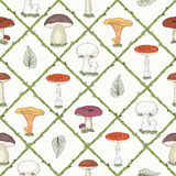 Hand drawn mushrooms seamless pattern Royalty Free Stock Photography