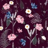 Hand-drawn naadloos botanisch patroon Stock Afbeelding