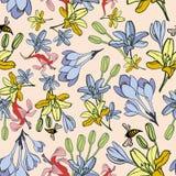 Hand-drawn naadloze patroon van de de zomerbloem Stock Fotografie