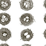 Hand drawn nests pattern. Vector seamless pattern with hand drawn bird nests with eggs. Graphic style, beautiful design elements, perfect for prints and patterns Stock Photography