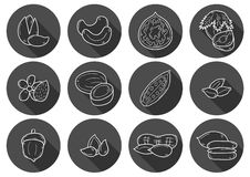 Hand drawn nuts icons Stock Photo