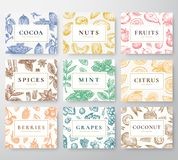 Hand Drawn Nuts, Spices and Berries with Fruits and Coconut Cards Set. Abstract Vector Sketch Backgrounds Collection. With Classy Retro Typography. Patterns stock illustration