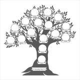 Hand drawn oak tree. Family tree. Stock Images