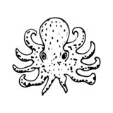 Hand Drawn octopus doodle. Sketch style icon. Marine underwater plants weeds and animals. Isolated on white background. Flat stock illustration