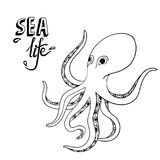 Hand drawn octopus. Sketch wild sea life. Creature in the ocean Stock Photography