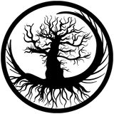 Hand drawn old bare tree crooked branches and root Stock Photo