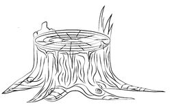 Hand drawn old stump, black and white outline Stock Photography