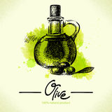 Hand drawn olive illustration with watercolor Stock Photos