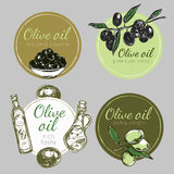 Hand Drawn Olive Oil Label Set. Colored and  hand drawn olive oil label set in circles with texts vector illustration Royalty Free Stock Images