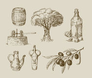 Hand drawn olive oil sketch. Vector hand drawn olive oil sketch and nature Stock Photos
