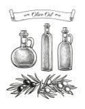 Hand drawn olive set. Royalty Free Stock Photos