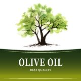 Hand drawn olive tree illustration with watercolor. Royalty Free Stock Images