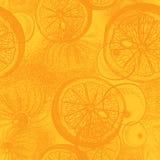 Hand drawn orange or lemon citrus fruit. Royalty Free Stock Photo