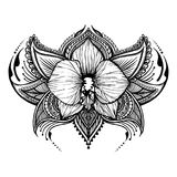 Hand-drawn orchid in east style. Can be used for backgrounds, business style, tattoo templates, cards design or else. Vector illustration royalty free illustration