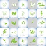 Hand drawn organic illustrations vector logo set Royalty Free Stock Photos