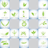 Hand drawn organic illustrations vector logo set 2. Hand drawn organic vector logo set. Hand drawn  ink green leaves, wheat, branches, bio signs, vector Stock Photo