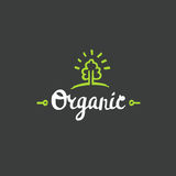 Hand drawn Organic lettering. Vector Bio organic green logo template. Royalty Free Stock Photography