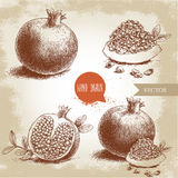 Hand drawn organic pomegranates set. Pomegranates with seeds and leafs. Royalty Free Stock Images