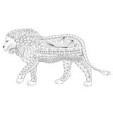 Hand drawn ornamental outline lion body and head Royalty Free Stock Photos