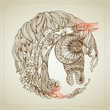 Hand drawn Ornamental Tattoo Horse Head. Highly Detailed Abstract Isolated Stock Photo