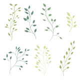 Hand drawn ornate branches with leaves. Vector Stock Photos