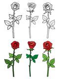 Hand drawn ouline and red roses - flowers royalty free illustration