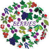 Hand drawn outline berries isolated. Round colorful set. Hand drawn berries in a round frame Royalty Free Stock Image