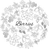Hand drawn outline berries isolated. Round set. Hand drawn berries in a round frame Royalty Free Stock Photo