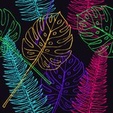 Fern Frond and Split Philodendrom colorful leaves. Hand drawn outline illustration, seamless pattern design on black background Royalty Free Stock Photo