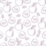Hand drawn outline peach with slice seamless pattern Royalty Free Stock Photo