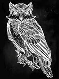 Hand drawn Owl design vintage style. Royalty Free Stock Photography