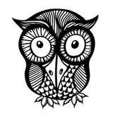 Hand drawn owl illustration. Royalty Free Stock Photo